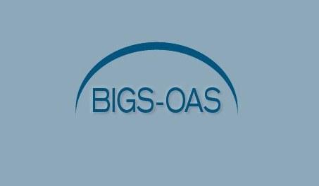 BIGS_OAS