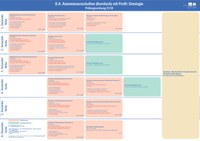 Studienverlaufsplan Profil - Sinologie.pdf